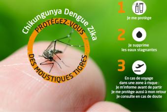 Chikungunya, Dengue, Zika : protégez-vous des moustiques tigres
